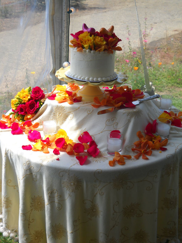 reid-wedding-2010-036