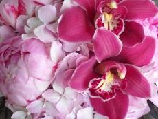 floral-favs-003